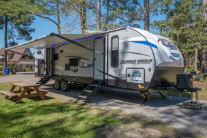 RV24 2018 Forest River Alpha Wolf-0
